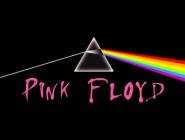 PINK FLOYD AU LYCEE